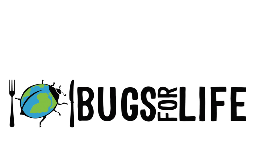 Bugs For Life impactvisuALS-38
